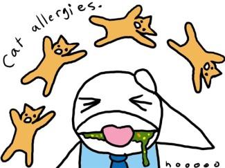 catallergies.jpg